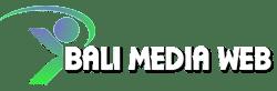 Bali Web Design, Jasa Pembuatan Website di Bali